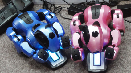 2011国際ロボット展 Dongbu Robot genibo